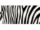 Wild pattern